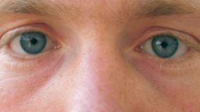 Feche acima dos olhos azuis masculinos tristes que piscam e que olham na câmera com luz do dia Retrato da observação considerável vídeos de arquivo