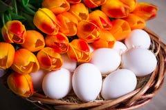 Feche acima dos ovos da páscoa e das flores na cesta Imagens de Stock