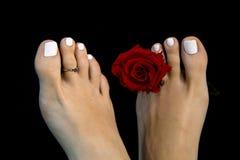 Feche acima dos pés bonitos da menina em detalhe com a flor da rosa do vermelho isolada no fundo preto, ` grego do pé do ` conhec foto de stock royalty free