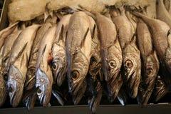 Feche acima dos peixes do mercado de produto fresco Foto de Stock Royalty Free