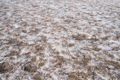 Feche acima dos planos de sal ponto da bacia de Badwater no mais baixo no hemisfério Norte no parque nacional de Vale da Morte Út fotos de stock royalty free
