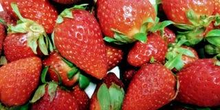 Feche acima dos strawberries foto de stock royalty free