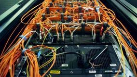 Feche acima dos vários cabos e dos fios obstruídos em servidores