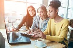 Feche acima e corte uma opinião três meninas que sentam-se junto e que estudam o diagrama da renda de dinheiro Querem analisar co imagens de stock