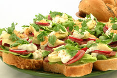 Feche acima em sanduíches saborosos Fotografia de Stock