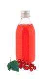 Feche acima em uma garrafa da medicina com xarope vermelho e o corinto fresco Imagem de Stock Royalty Free
