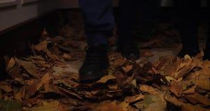 Feche acima nas folhas de outono de queda video estoque