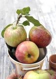Feche em maçãs orgânicas Imagens de Stock Royalty Free