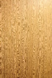 Feche-nos acima da textura bonita da madeira da casca como o fundo natural imagens de stock