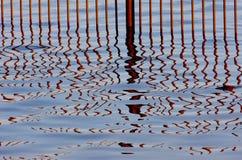 Fechten im Wasser Stockbilder