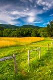 Fechten Sie und Feld an der Cades Bucht, Great Smoky Mountains-Staatsangehöriger Stockfoto