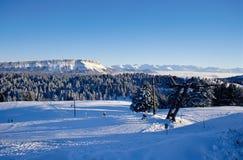 Feclaz和Margeriaz下雪的山在尚贝里,法国附近 免版税库存图片