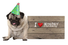 Fed up pug puppy dog wearing party hat, sitting down next to wooden sign with text I love monday Royalty Free Stock Photos