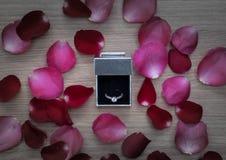 Fede nuziale con il rosa ed i petali di rosa rossa su superficie di legno immagini stock libere da diritti