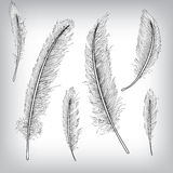 Feder-Hand gezeichneter Hintergrund Lizenzfreies Stockbild
