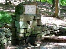 Feder im Wald gebildet von den Steinen stockfotos