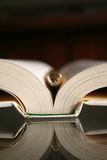 Feder und Buch Stockbilder
