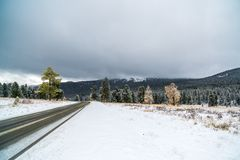 Federal highway M-52 Chuysky tract, asphalted road with markings among the autumn trees covered with snow. Royalty Free Stock Photo