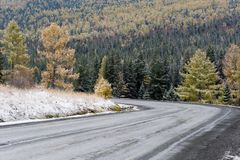 Federal highway M-52 Chuysky tract, asphalted road with markings among the autumn trees covered with snow. Royalty Free Stock Photography