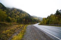 Federalt område för huvudväg M-52 Chuysky, asfaltväg med teckning bland höstträden Royaltyfri Foto