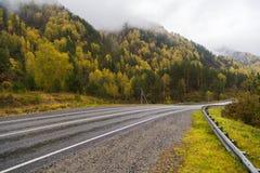 Federalt område för huvudväg M-52 Chuysky, asfaltväg med teckning bland höstträden Arkivfoton