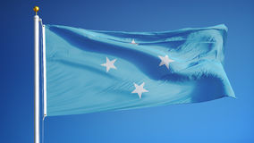 Federated States of Micronesia flag in slow motion seamlessly looped with alpha. Federated States of Micronesia flag waving in slow motion against blue sky stock footage