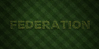 FEDERATION - fresh Grass letters with flowers and dandelions - 3D rendered royalty free stock image. Can be used for online banner ads and direct mailers Stock Image