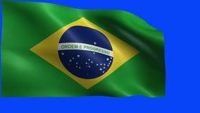 Federative republika Brazylia, brazylijczyk flaga, flaga Brazylia - pętla royalty ilustracja