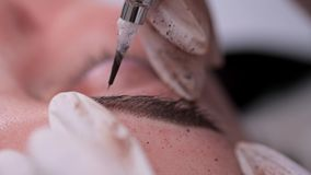 Federfarbe auf den Augenbrauen Pigmentanwendung Nahaufnahme, dauerhaftes Make-up 4K langsames MO stock video