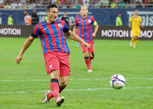 Federico Piovaccari Of Steaua Bucharest Royalty Free Stock Photos