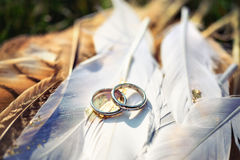 Fedi nuziali con i diamanti sulle piume Fotografie Stock
