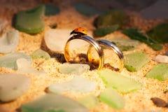 Fedi nuziali dell'oro nella sabbia e nella coccinella Fotografia Stock Libera da Diritti