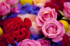 Fedi nuziali dorate sul bouquer di nozze delle rose rosa e dei fiori viola e rossi Fotografia Stock Libera da Diritti