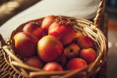 Fedi nuziali e frutta immagine stock libera da diritti