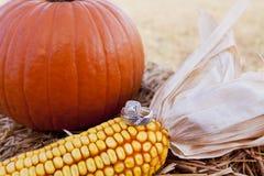 Fedi nuziali su un cereale Fotografie Stock Libere da Diritti
