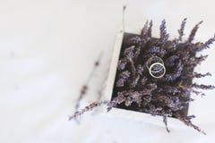 Fedi nuziali sui fiori di lavanda Fotografia Stock