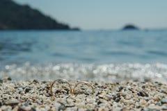 Fedi nuziali sulla spiaggia sul mare blu del fondo, Immagini Stock Libere da Diritti
