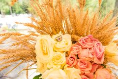 Fedi nuziali sulle orecchie del mazzo e del grano delle rose fotografie stock