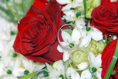 Fedi nuziali sulle rose rosse Fotografia Stock