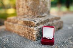 Fedi nuziali in una scatola rossa per gli anelli Immagini Stock