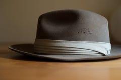 Fedora Hat Royalty Free Stock Photo