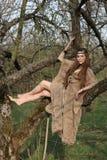 Fee auf den Niederlassungen eines alten Baums Stockfotografie