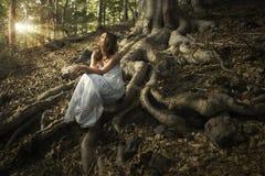 Fee des Waldes Stockbild
