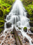 Fee fällt in Columbia River Schlucht, Oregon Lizenzfreies Stockfoto