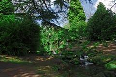 Fee Glen Sefton Park Liverpool Großbritannien Lizenzfreies Stockbild