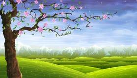 Fee-verhaal rollend landschap en een bloeiende boom Stock Foto's