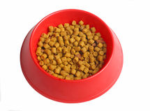 Feed. For cats in red dishware Royalty Free Stock Photos