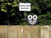 Feed the birds Stock Photos