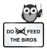 Feed Birds Royalty Free Stock Photography