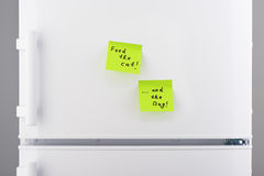 Feed the cat and the dog notes on white refrigerator. Feed the cat and the dog notes on green sticky paper on white refrigerator door Royalty Free Stock Image